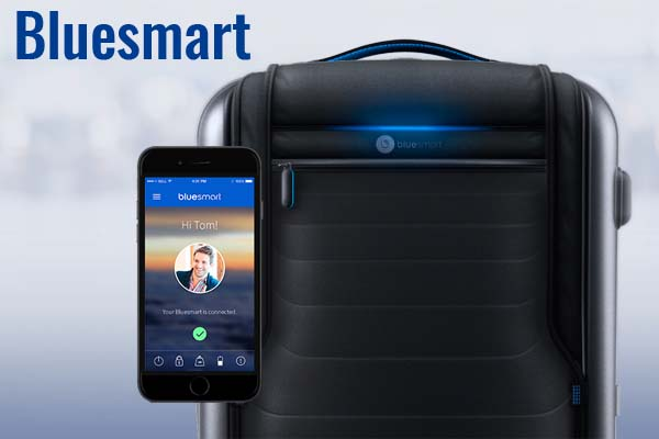Bluesmart carry