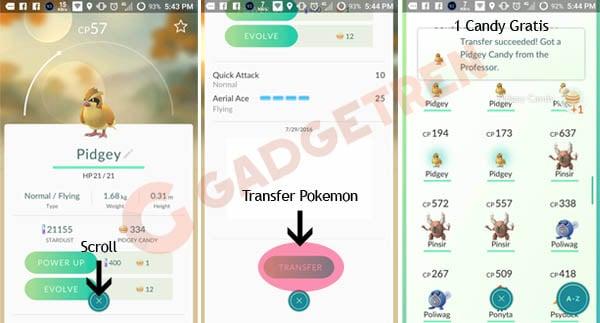 Transfer Pokemon di Pokemon GO
