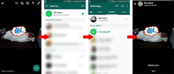 Cara Menggunakan WhatsApp Stories share