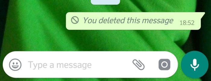 Pesan WhatsApp yang Berhasil Dihapus