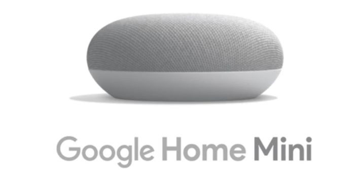 Google Home Mini New