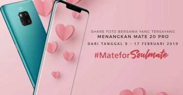 Huawei Mate 20 Pro Valentine Feature