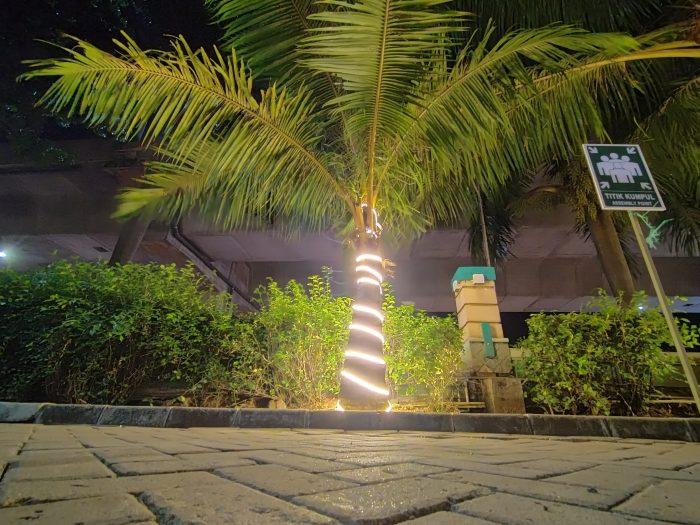 OPPO A Kamera Belakang Ultra Wide Malam Pohon Night Mode