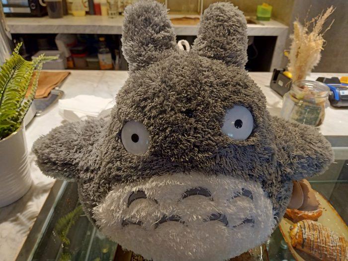 OPPOR2F-Totoro-48MP