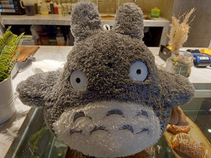 OPPOR2F-Totoro-Normal
