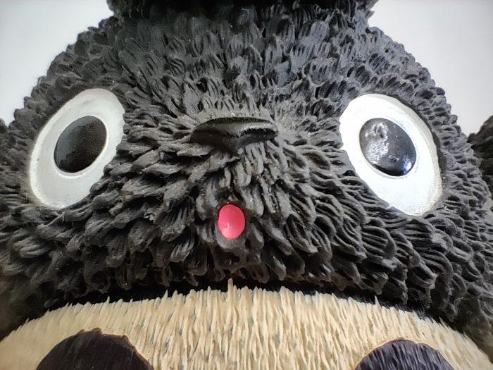 RealmeXT-Totoro-Ultramakro