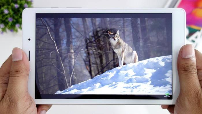Samsung Galaxy Tab A (8.0) 2019 Layar Video