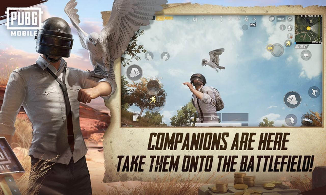 Cara Mendapatkan Companion di PUBG Mobile Header