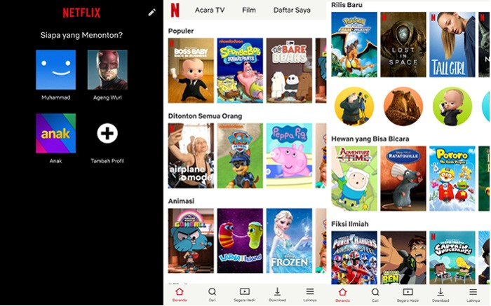 Netflix Parental Control for Kids