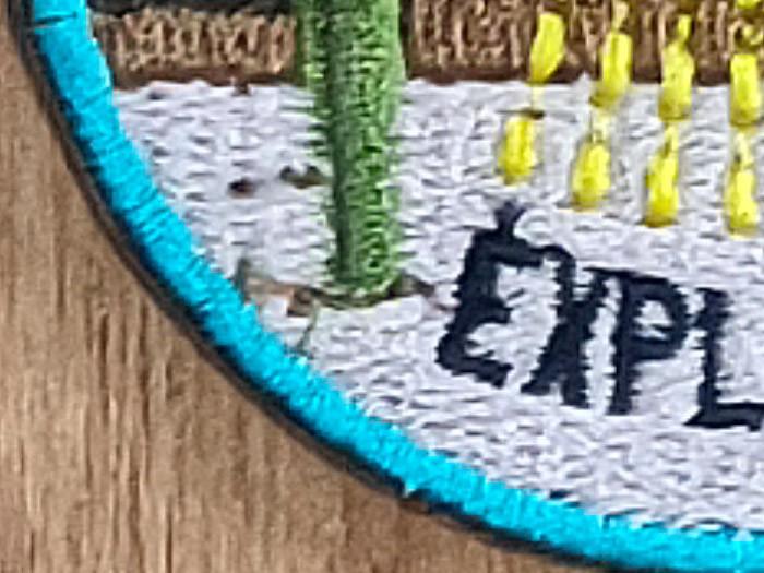 OPPO Reno4 Pro - 180MP Crop