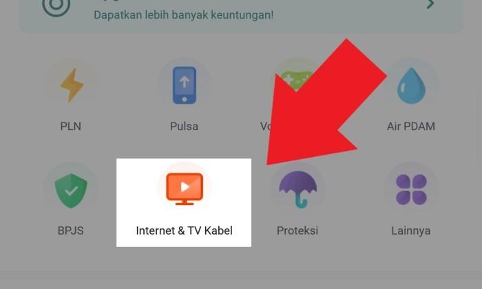 Tagihan Internet OVO Indihome