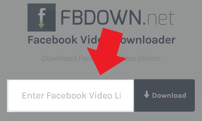 Melalui FBDown Masukan Link