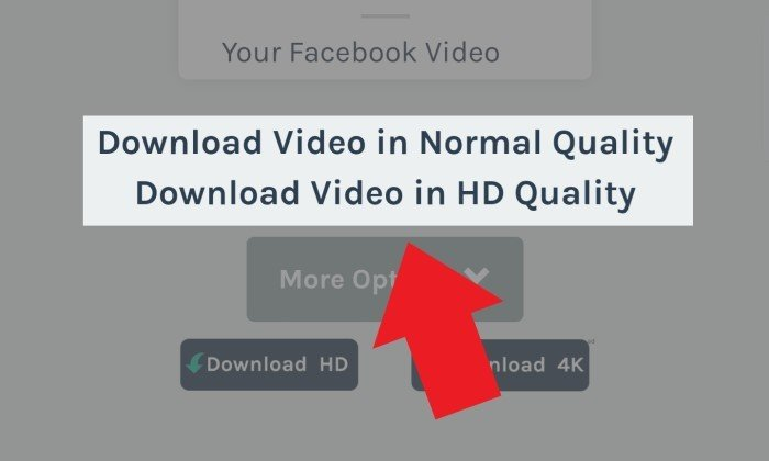 Melalui FBDown Kualitas Video