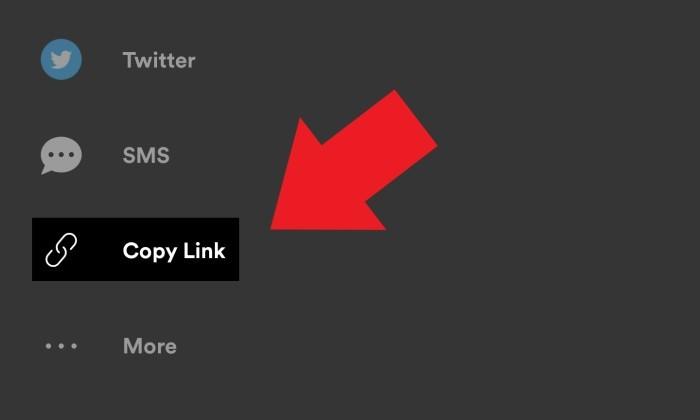 Spotify Barcode Salin