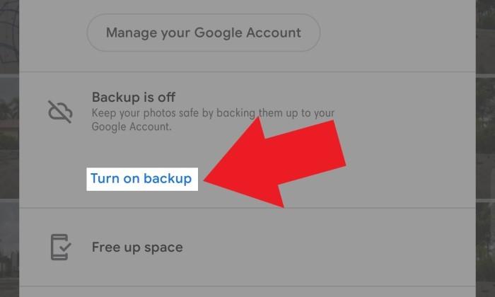 Google Photo turn on backup