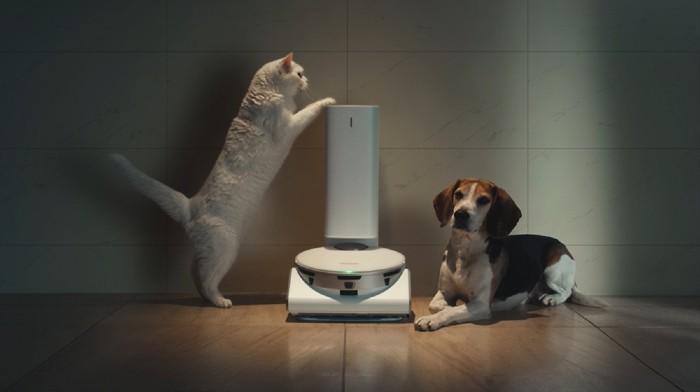 Samsung-JetBot-90-AI-dog-and-cat