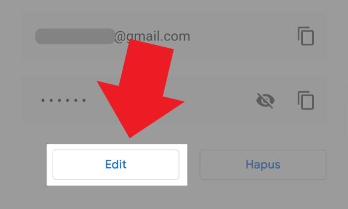 Cara Melihat Password yang Tersimpan di Google Chrome 19