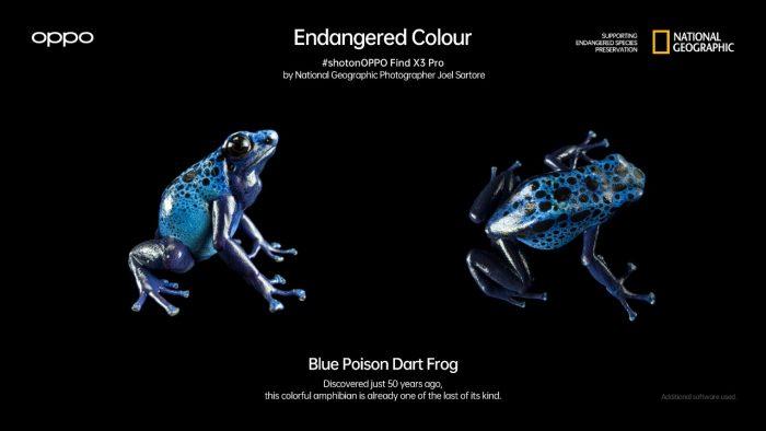 Find X3 Pro Blue Frog