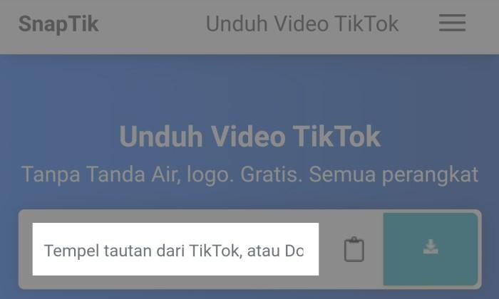 Cara Download TikTok Tanpa Watermark Tanpa Aplikasi 8