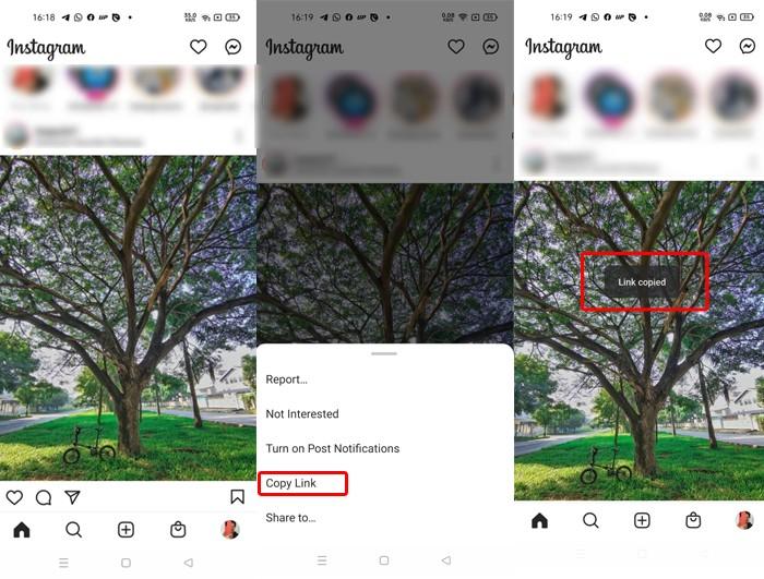 Instagram Download Photo Link