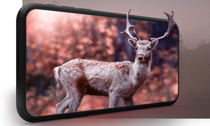 MediaTek Dimensity 1200 Vs Snapdragon 870 Display