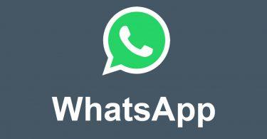 WhatsApp Logo Feature
