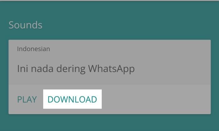Cara Menggunakan Sound of Text WhatsApp - 2