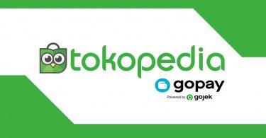 Tokopedia GoPay Logo